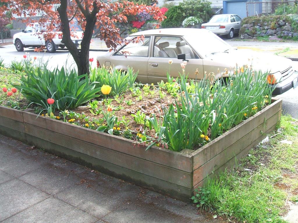 Veggies and flowers in big raised bed