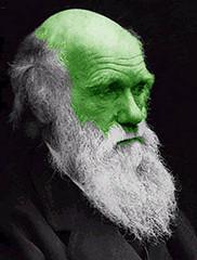 Quesy Darwin