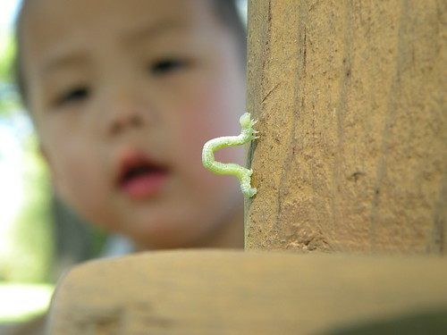 h with inchworm by you.