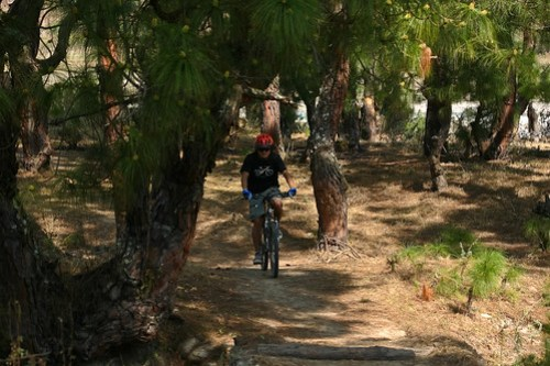Mountain Biking in Punakha