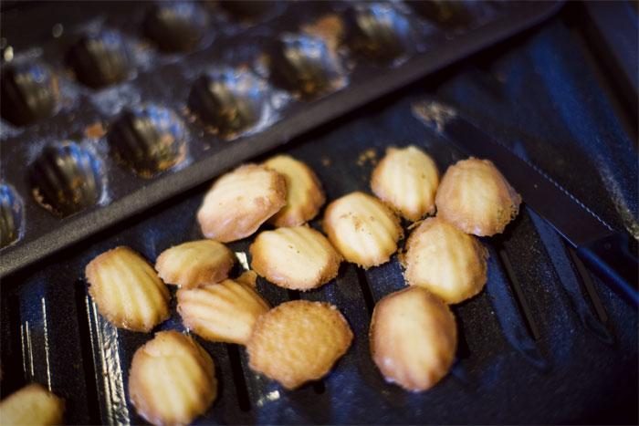 I baked madeleines