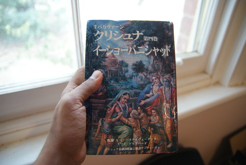 The Krishna book