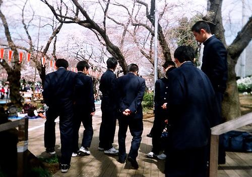 [tokyo]さあ、みんなでお花見に出かけよ