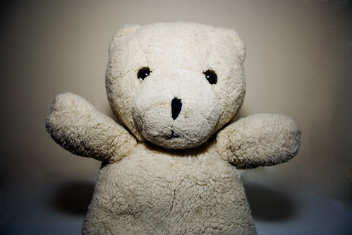 108:365 - {thing 6} - teddy