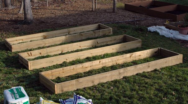 New garden boxes