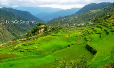 Sagada, Mt. Province - Bangaan Rice Terraces