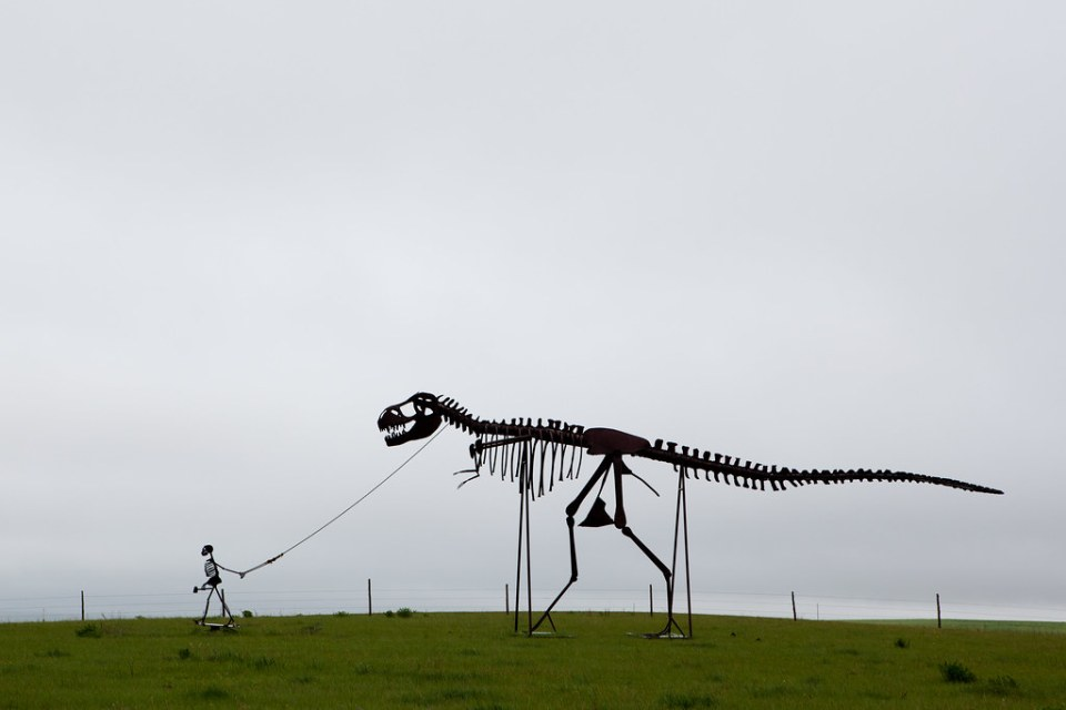 Skeleton walking a dinosaur....