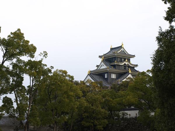 岡山城 1