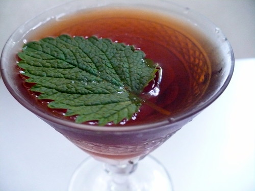 Bitter Wood Cocktail