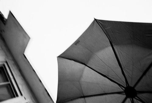 Okinawa Snap. Rain