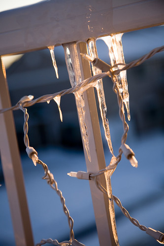 icicles 021909