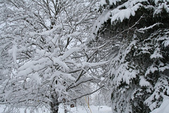 storm_feb23-1