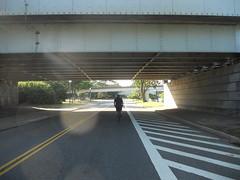 Bike Commute 50: Ohio Drive under the 14th Street Bridge by Rootchopper