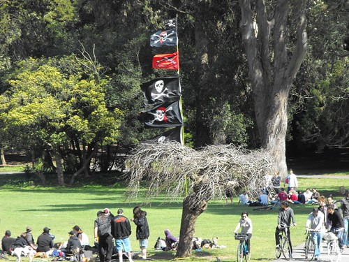 Crusty punk pirates seize the Janis Joplin tree 1