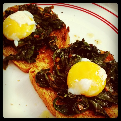 Poached eggs and turnip greens on toast, sorta