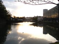...al tramonto