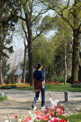 walking woman and tulips, istanbul, pentax k10d