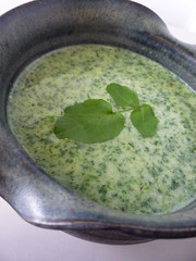 Wild Watercress Soup