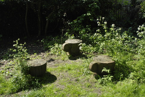 Downham Woodland Walk