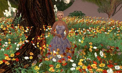 Saffia in Jensine amongst the poppies on Matanzas