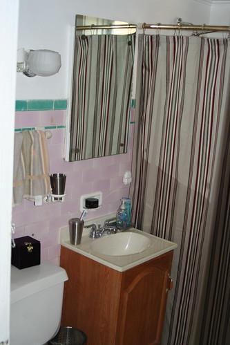 The Pink Bathroom - Sink