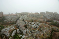Cadillac Mountain in the Fog