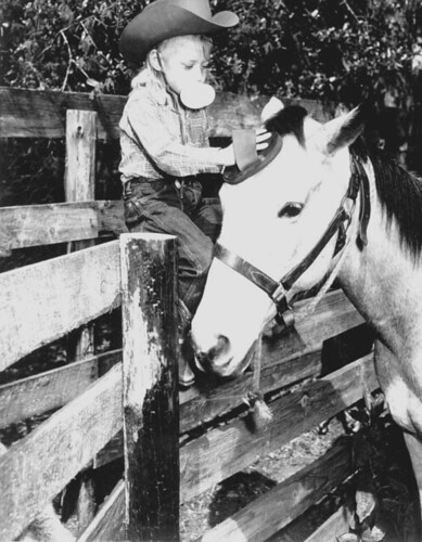 Foto de la State Library and Archives of Florida. Young rider, Patty Blackmon grooms her horse Buck: Ocala, Florida