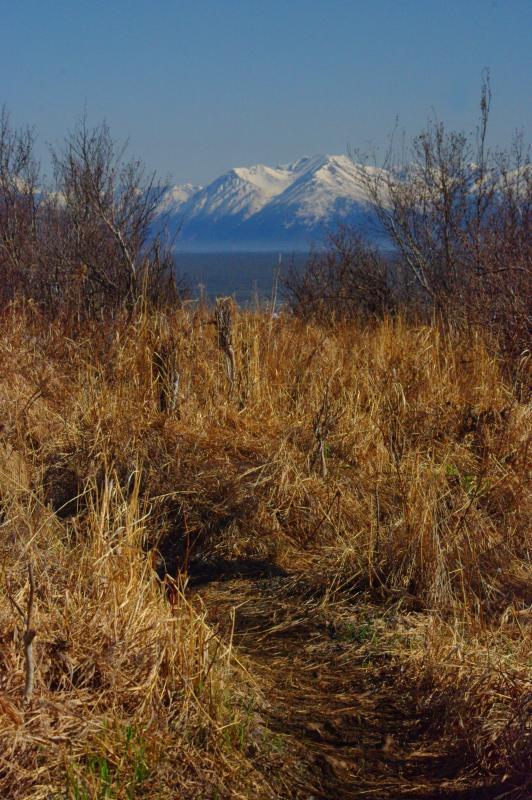 IMGP3451 a 5K Hike Trail and Vista