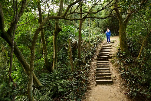 There are nice hiking trails everywhere in Taiwan.  This one is on the hill next to my house.  Sooner or later Ill get around to writing a blog about some of these trails, but Im just too busy right now.