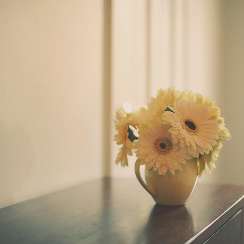 good morning~ (by *Peanut (Lauren))