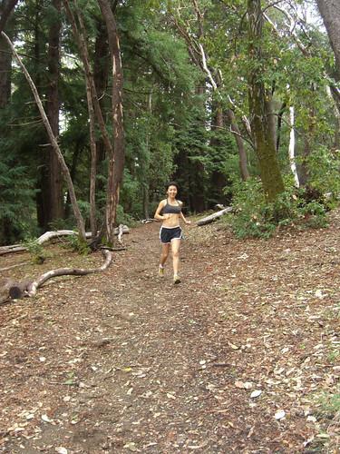 The Dean Trail