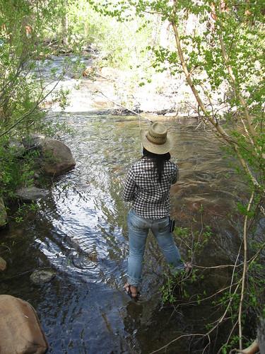 Bishop park campground brown bag travel for Bishop creek fishing