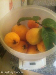 Bountiful Harvest by A Sydney Foodie