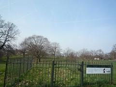 Greenwich - Park (5)