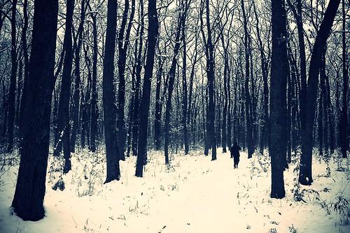 winterr1