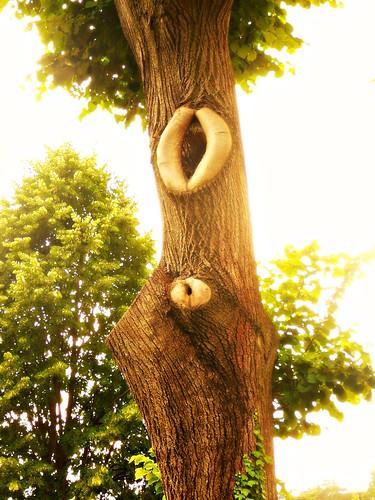 Sex & Nature