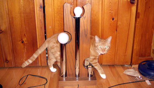 20100403 - yard sale finds - lamp ($2) - GEDC1858