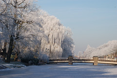 Frozen singel, Gouda