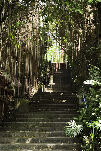 The Campuan Steps to Pentasanan and Rumah Cinta