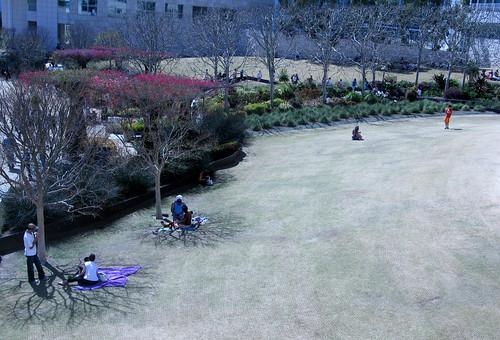 Getty lawn