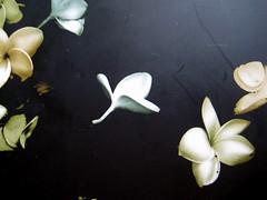 Helen Humphreys, Il giardino perduto, Playground 2009, graphic designer Federico Borghi, imm. di cop.: ©Luis Mariano Gonzales (part.) 3