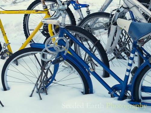 359. Wheels