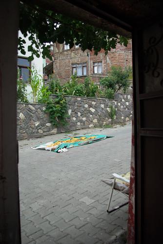 Konuralp village (üskübü), düzce city, pentax k10d