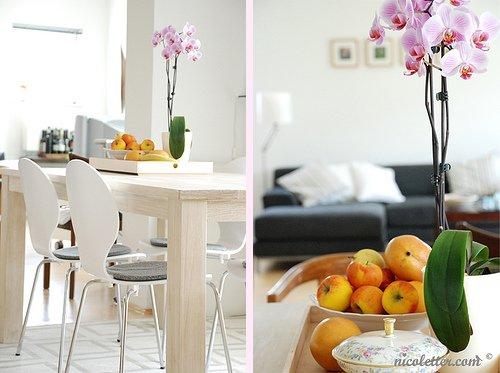 Nicoletter Paper Goods {+ a pretty apartment!}