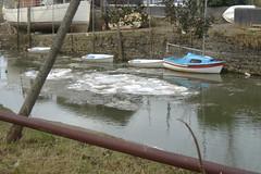 090107-frozen595