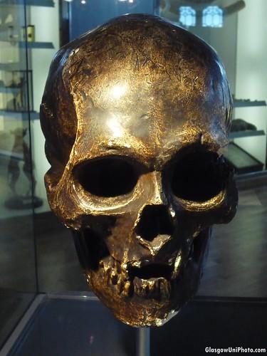 The Skull of Robert the Bruce [Museum Week]