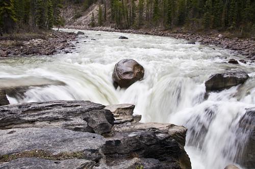 Sunwapta Falls rushes through a limestone gorge