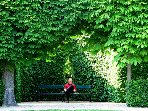 Garden of Lower Belvedere by you.