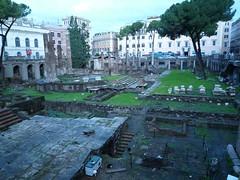 Rome - Largo di Torre Argentina