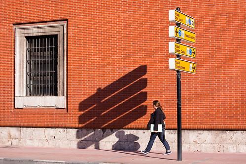 Cuestión de luz